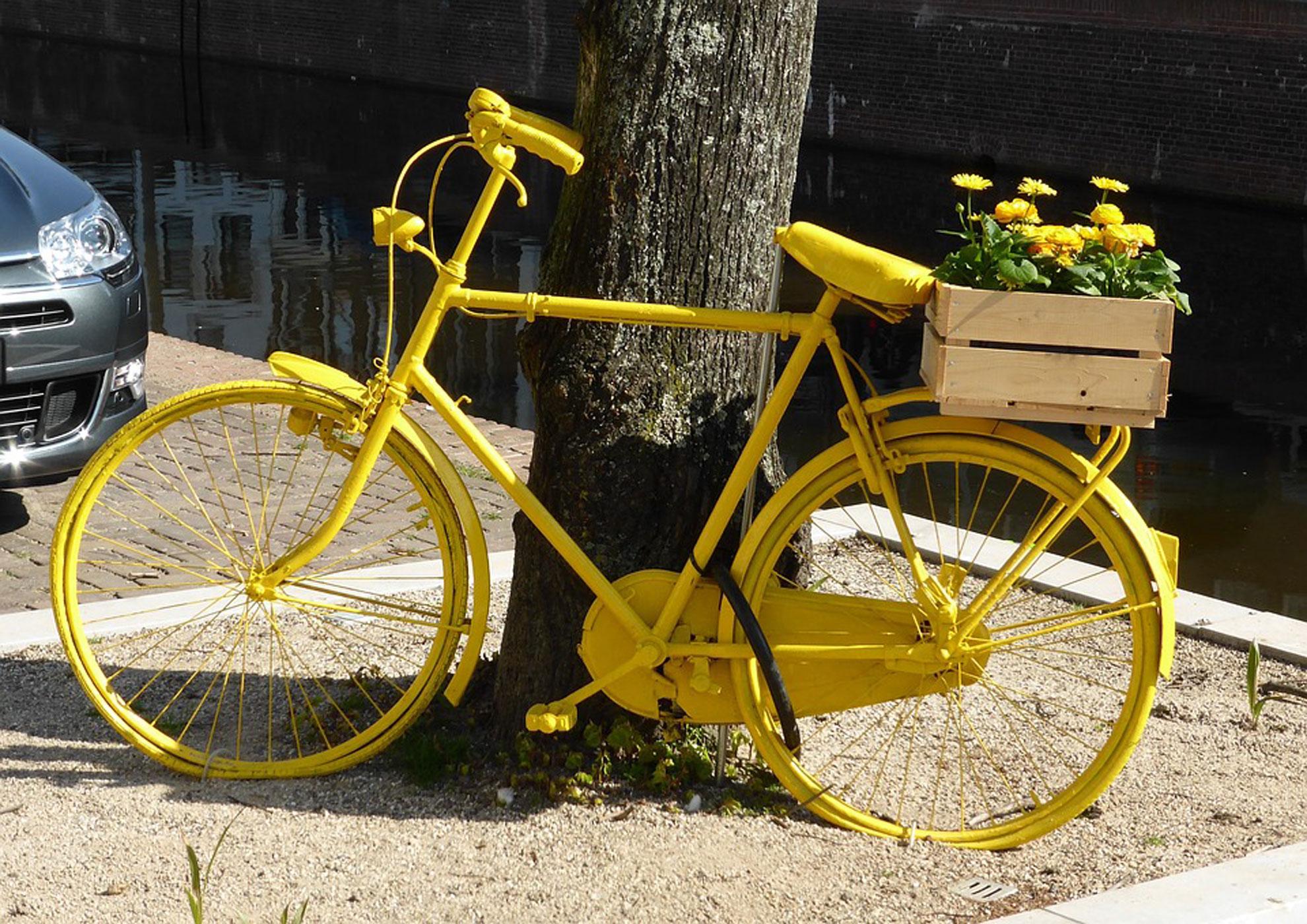 Mai, mois du vélo